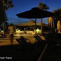 Photos: 夜のプールサイド