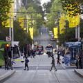 Photos: 街角トラム