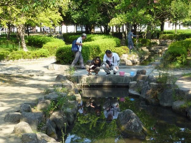 P1050227 中部公園