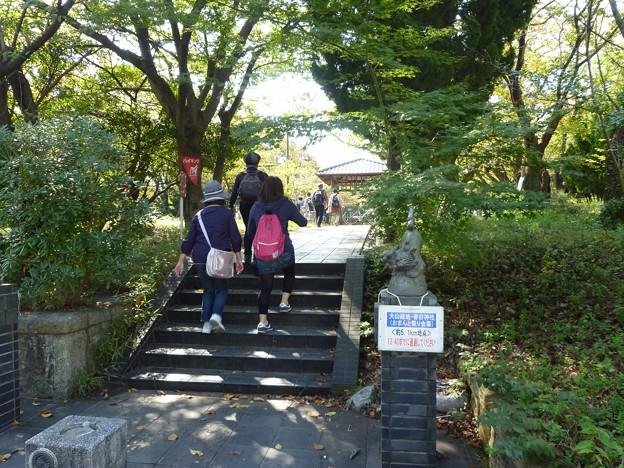 P1050238 大山緑地・春日神社(おまんと祭り会場)