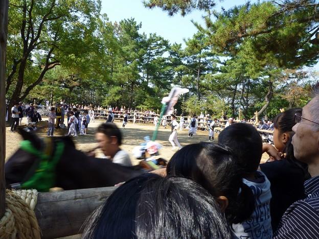 P1050251 大山緑地・春日神社(おまんと祭り会場)