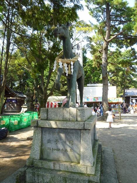 P1050259 大山緑地・春日神社(おまんと祭り会場)