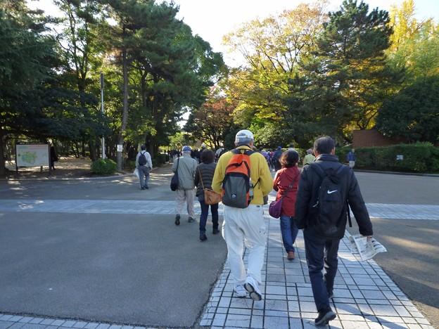 P1050773 鶴舞公園 (1)