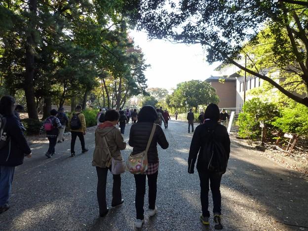 P1050773 鶴舞公園 (2)