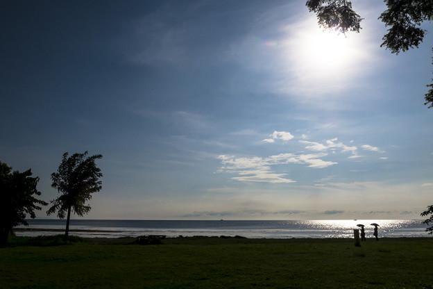 琵琶湖(長浜城より)