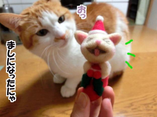 クリスマスバージョンに変身