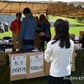 Photos: DSC_8222
