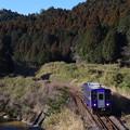 写真: 普通列車 IMGP5199