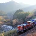 写真: 亀山配給(出場)IMGP5320
