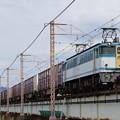 写真: カラシ牽引5087レ IMGP6982