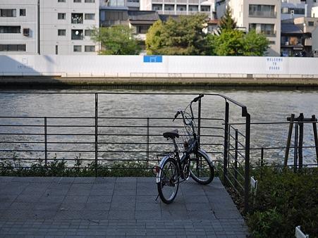 忘られた自転車