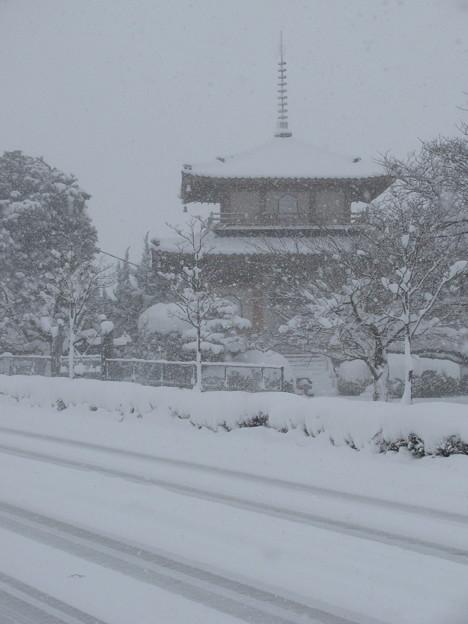 雪の小郡市内(3)