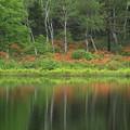 Photos: 湖面の色彩