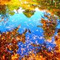 水面鏡-kagami-