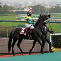 Photos: ヒルノダムールと藤田伸二騎手
