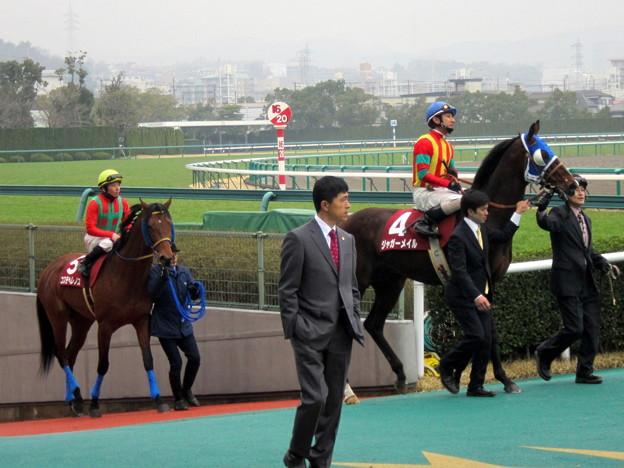 ジャガーメイルと四位洋文騎手に続くコスモヘレノスと柴田大知騎手