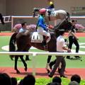 Photos: トーセンバジルと 福永祐一騎手