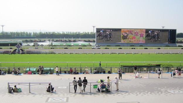 快晴の京都競馬場