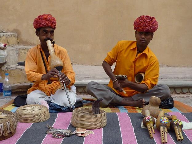 アンベール城蛇使いDiminishing cobra  charmers in India   *ひょうたんの奏でる笛に誘われて籠のコブラは首をもたげぬ