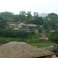 田んぼも世界遺産、慶州良洞村 Rice terrace in Yangdong Vill-age