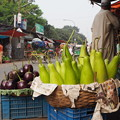 Photos: 何気ない美しさ Aspect of daily life in Dhaka