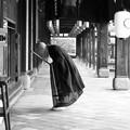写真: 祈りの形 Worshiping Monk in  Manpuku-ji        *禅僧の薄き法衣や花の冷え
