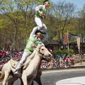 馬上武芸 Equestrian Feats,South Korea
