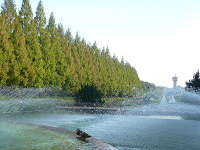 相模原公園で 噴水