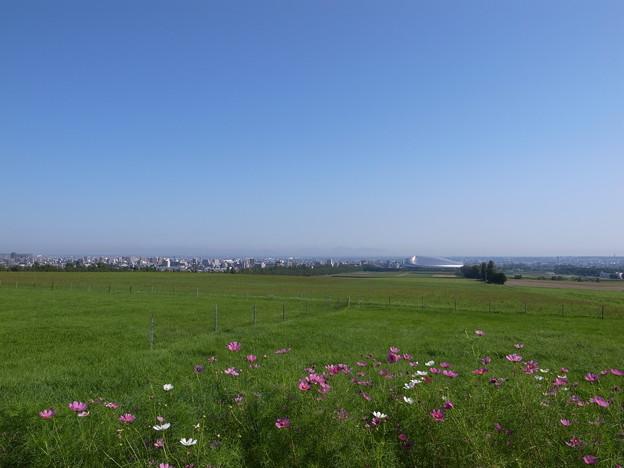 写真: 羊ヶ丘展望台