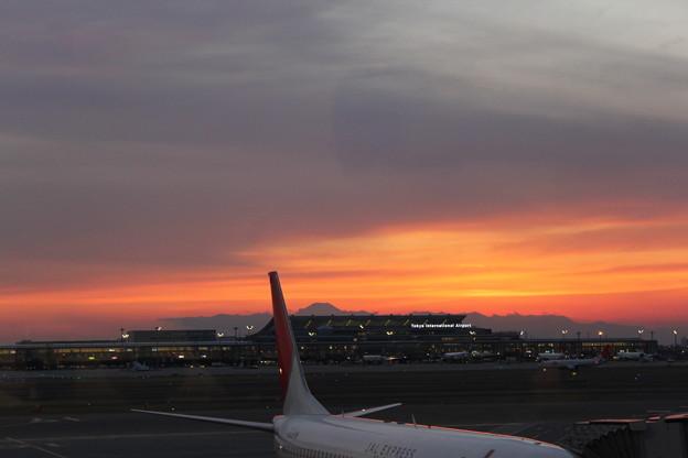 Photos: 国際線ターミナルと富士山