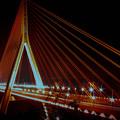 Photos: 夜/斜張橋