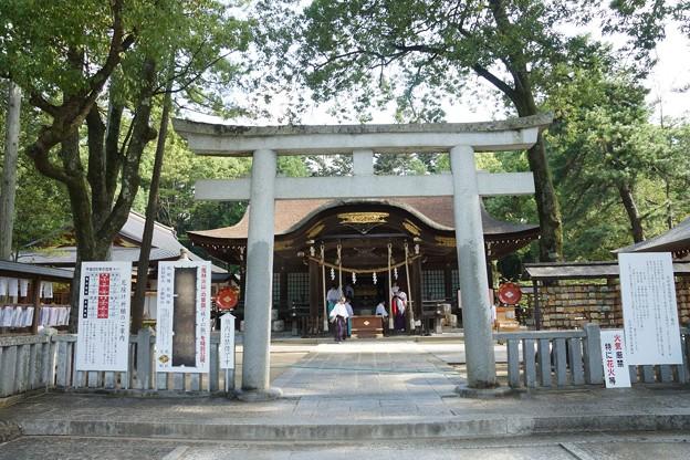 010武田神社0011