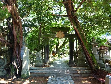 多賀神社03