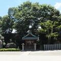 Photos: 椿神社05 御倉神社(宇迦之御霊神)