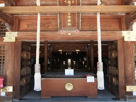 椿神社09