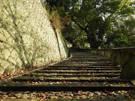 久能山東照宮15 昇竜の地形