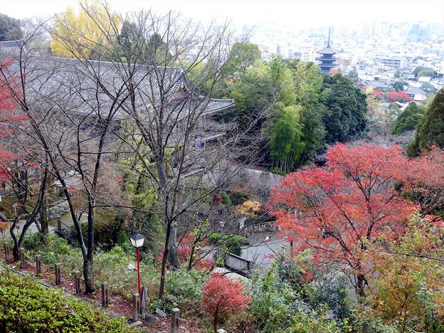 京都霊山護国神社10