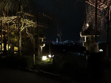 清水寺(夜)05