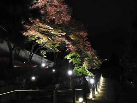 知恩院(ライトアップ)26
