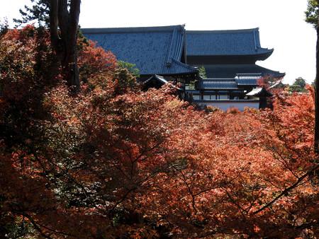 東福寺31