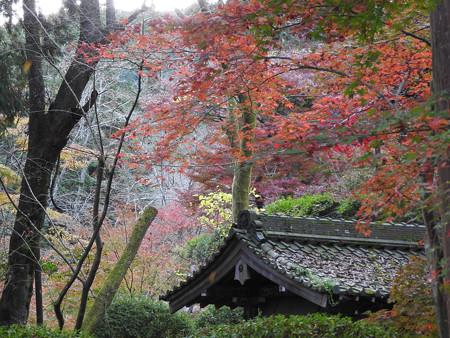 三井寺06