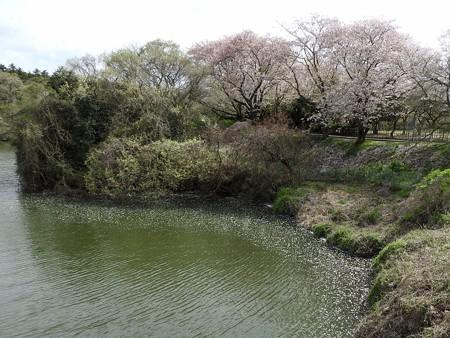 千葉子どもの国 23