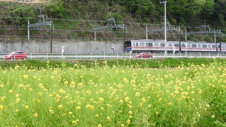 佐倉チューリップフェスタ ワイド10 京成電車