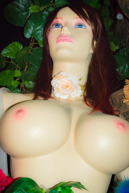 裸のマネキン@愛と性のミュージアム