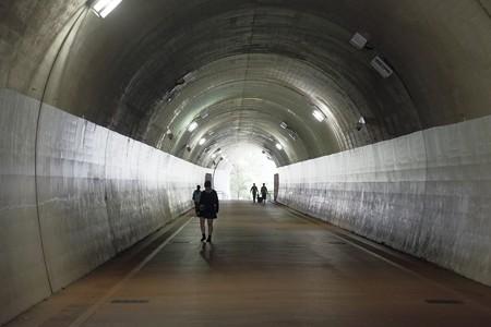 2015.10.22 東横フラワー緑道 高島山トンネル