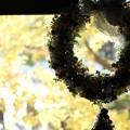 Photos: 2015.12.16 山手洋館 エリスマン邸 世界のクリスマス 窓辺にリース