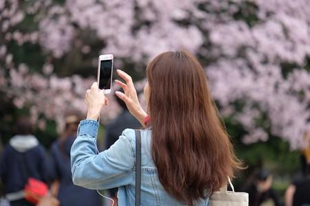 2016.04.01 千鳥ヶ淵 桜とiPhone