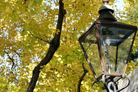 2009.11.21 山下橋 銀杏とガス燈