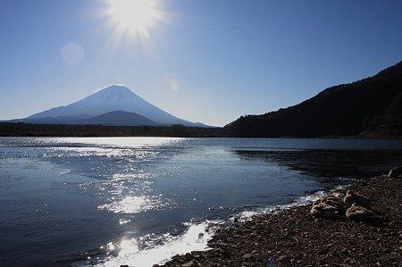 2010.01.02 精進湖 鴨と富士
