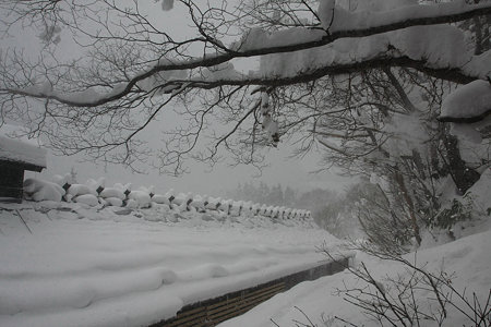 2010.01.15 鶴の湯 屋根